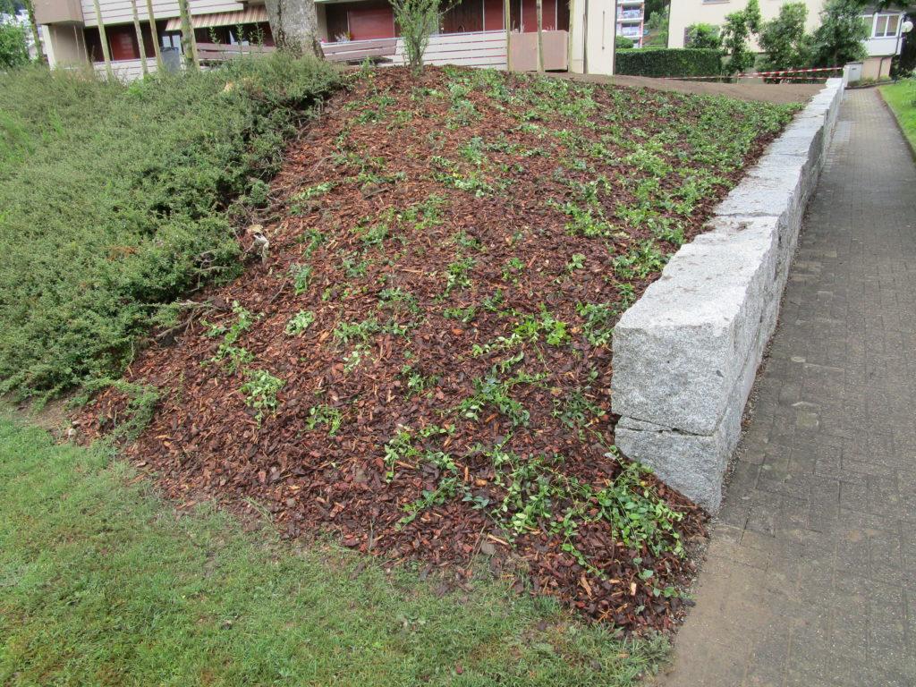 Quadersteine und Bepflanzung